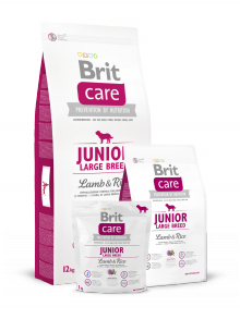 Brit - Care Junior Large Breed Lamb & Rice 1kg